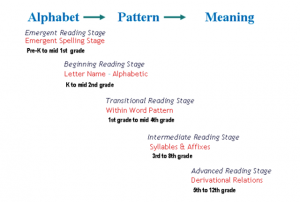 Words Their Way explicit phonics stages